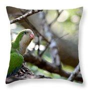 Monk Parrot Throw Pillow