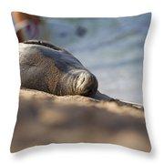 Monk Seal Basking. Throw Pillow
