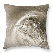 Monk Seal Throw Pillow