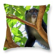 Monkey Throw Pillow