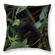 Monkey Face Throw Pillow