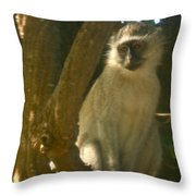 Monkey In The Tree Throw Pillow