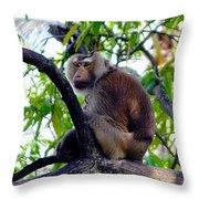 Monkey In Tree Throw Pillow