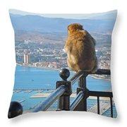 Monkey Overlooking Spain Throw Pillow