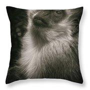 Monkey Portrait Throw Pillow