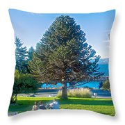 Monkey Puzzle Tree In Central Park In Bariloche-argentina  Throw Pillow