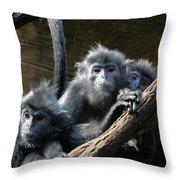 Monkey Trio Throw Pillow