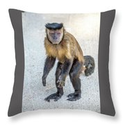Monkey_0726 Throw Pillow