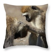 Monkeys Grooming Throw Pillow