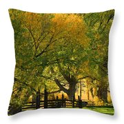 Mono Lake Fall In The Mountains Throw Pillow