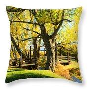 Mono Lake Garden Bridge Throw Pillow