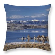Mono Lk Winter Throw Pillow