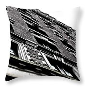 Monochromatic Facade Throw Pillow