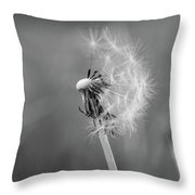 Monochrome Beauty Throw Pillow