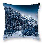 Monochrome Morning Throw Pillow