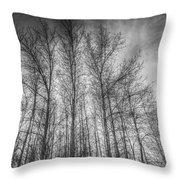 Monochrome Sunset Trees Throw Pillow