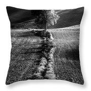 Monochrome Valley Throw Pillow