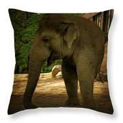 Monophante Throw Pillow