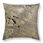 Monoprint Throw Pillow
