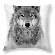 Monotone Timber Wolf  Throw Pillow
