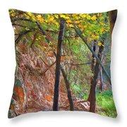 Monrovia Canyon In Fall Throw Pillow