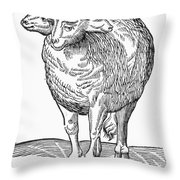 Monster, 16th Century Throw Pillow