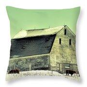 Monster Barn Throw Pillow