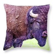 Monster Bison Throw Pillow