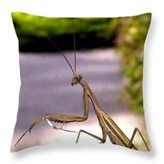 Monster Mantis Throw Pillow