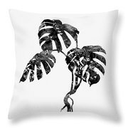 Monstera Leaf-black Throw Pillow