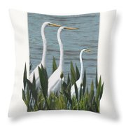 Montage With 3 Great White Egrets Throw Pillow