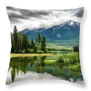 Montana Beauty Throw Pillow
