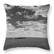 Montana, Big Sky Country Throw Pillow