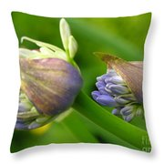 Montana Blue Throw Pillow