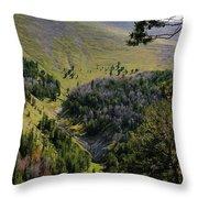 Montana Call Of The Wild Throw Pillow
