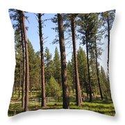 Montana Country  Throw Pillow