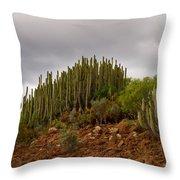 Montana De Gueza Throw Pillow