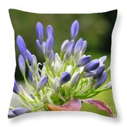 Montana Flower  Throw Pillow