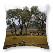 Montana Homestead Throw Pillow