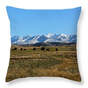 Montana Mountains Big Sky Throw Pillow