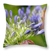 Montana Purple And Blue Throw Pillow