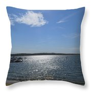 Montauk Seascape Throw Pillow