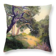 Montecito Dry River Oaks Throw Pillow