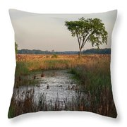 Montezuma Morning Throw Pillow