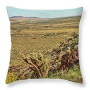 Montezuma Rd-borrego Occitillo Wells View Throw Pillow