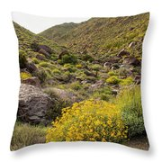 Montezuma Rd Daisey Garden Throw Pillow