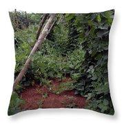 Monticello Vegetable Garden  Tee Pee Throw Pillow