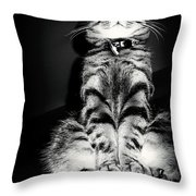 Monty Our Precious Cat Throw Pillow