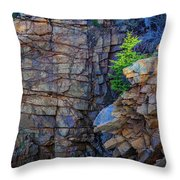 Monument Cove I Throw Pillow