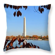 Monument River Throw Pillow
